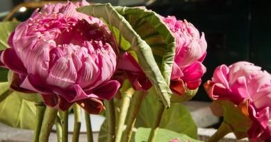Moderní umělé květiny v domě
