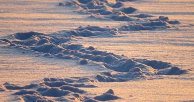 Neradi lyžujete? Vyzkoušejte netradiční zimní sporty