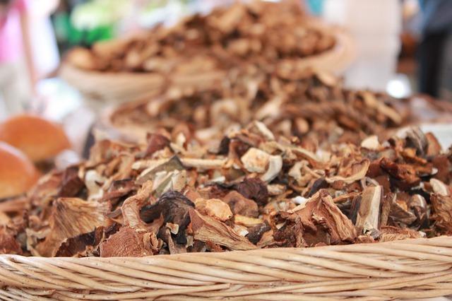 Houbaři mají rej! Jak houby správně zpracovat?