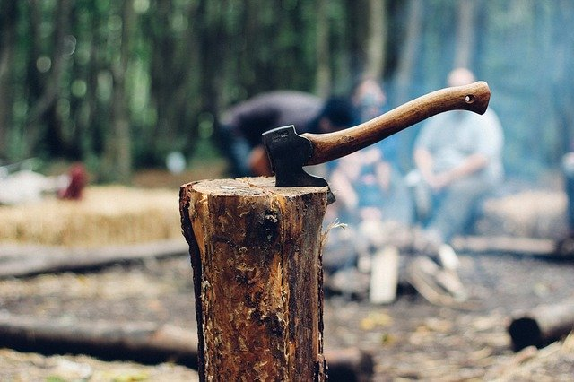 BOZP pro pracovníky v lese. Co se musí dodržovat?