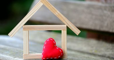Každý šestý dům u nás je dřevostavbou